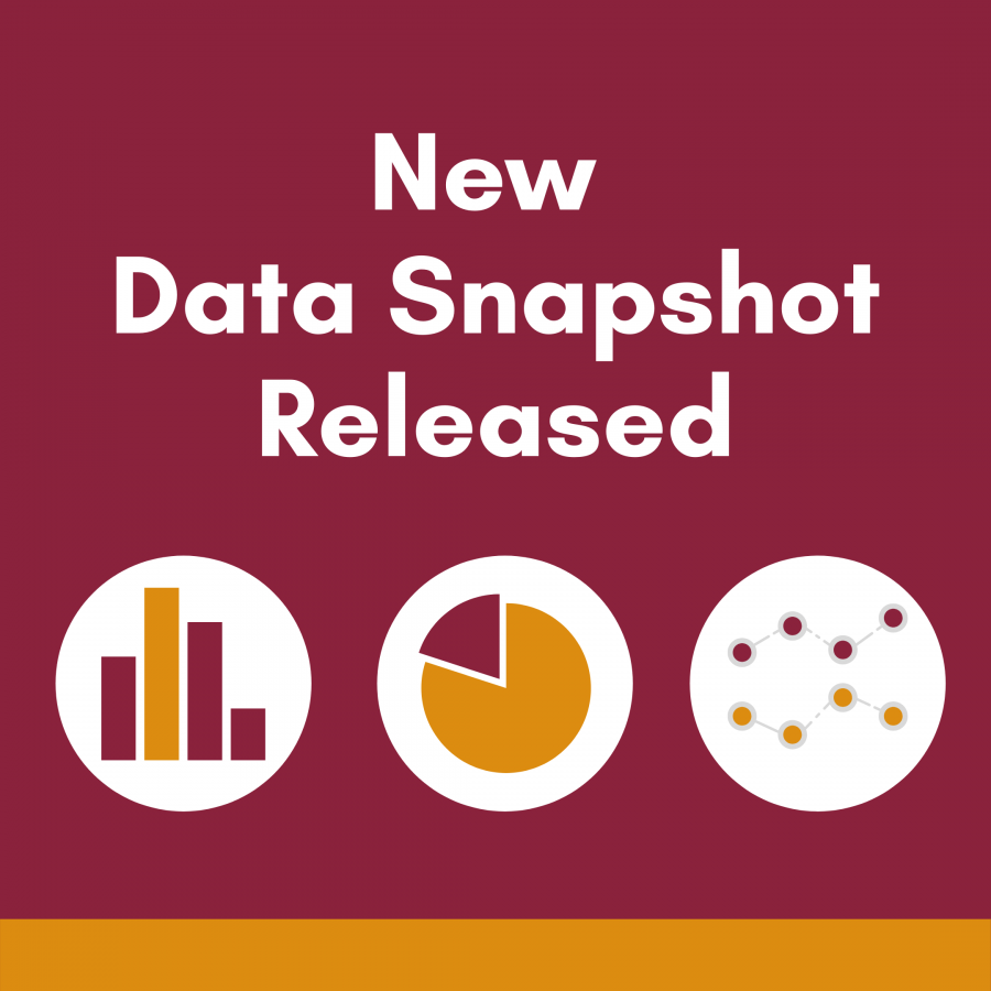 New Data Snapshot with icons of different chart types