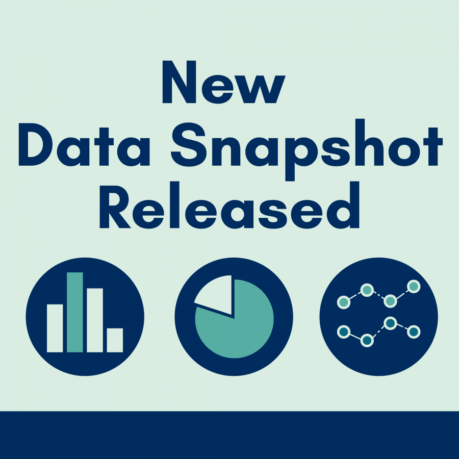 New Data Snapshot, with icons of different chart types