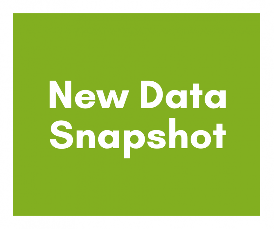 New Data Snapshot