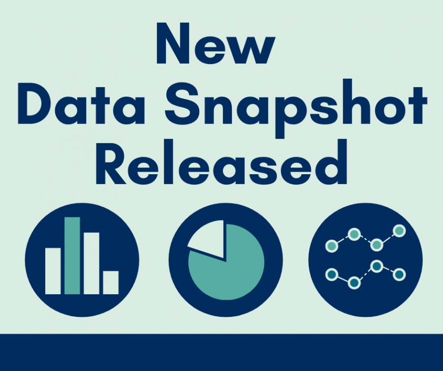 ​​Graphic with a few images of charts and a headline that says New Data Snapshot Released